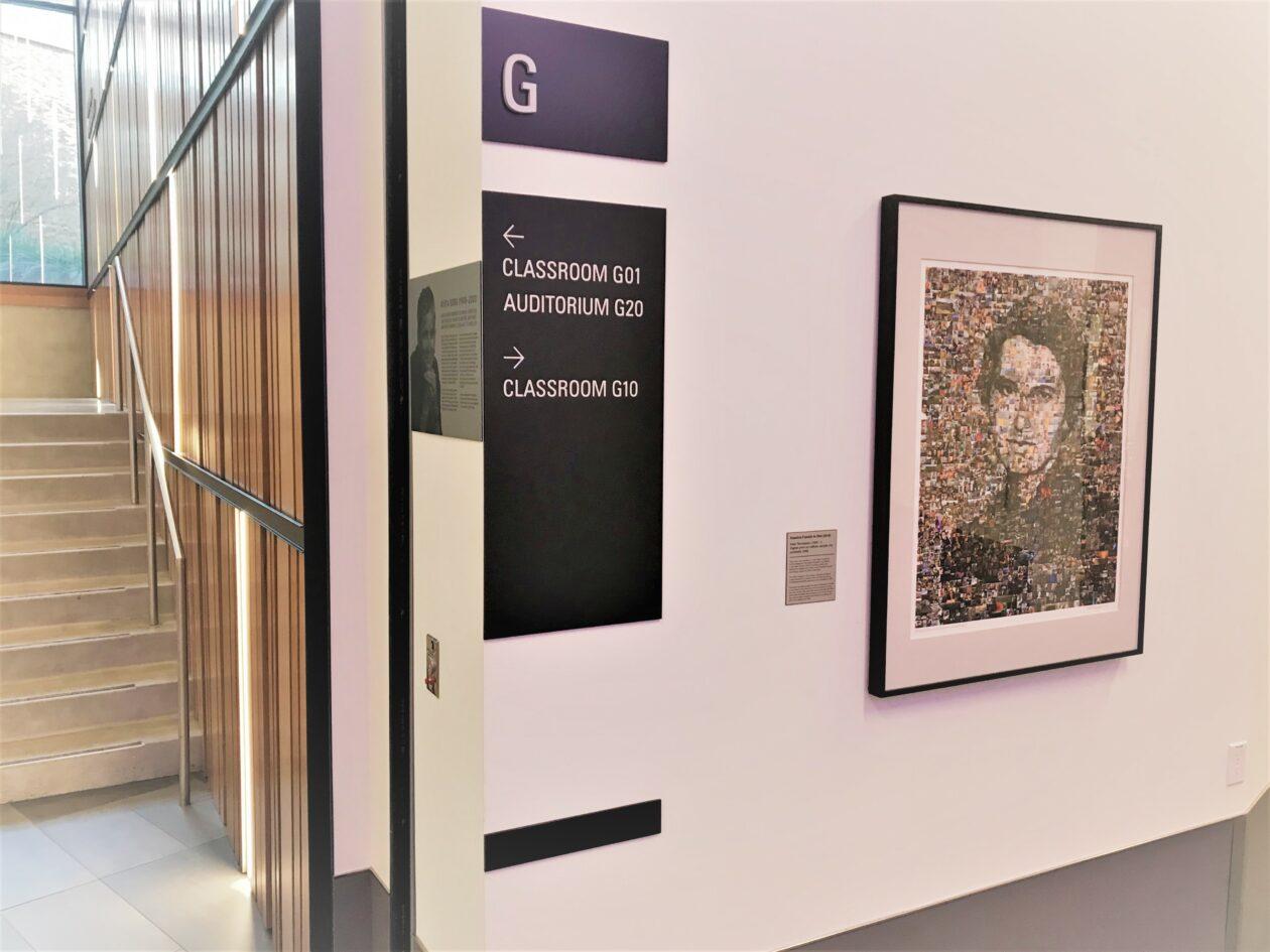 Rosalind Franklin portrait on display