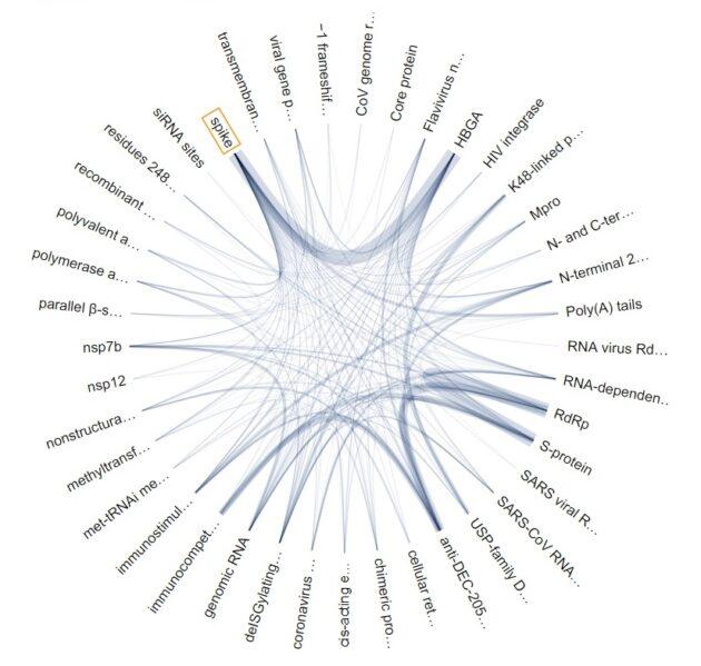 CoViz graph