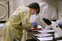Helen Chu in lab