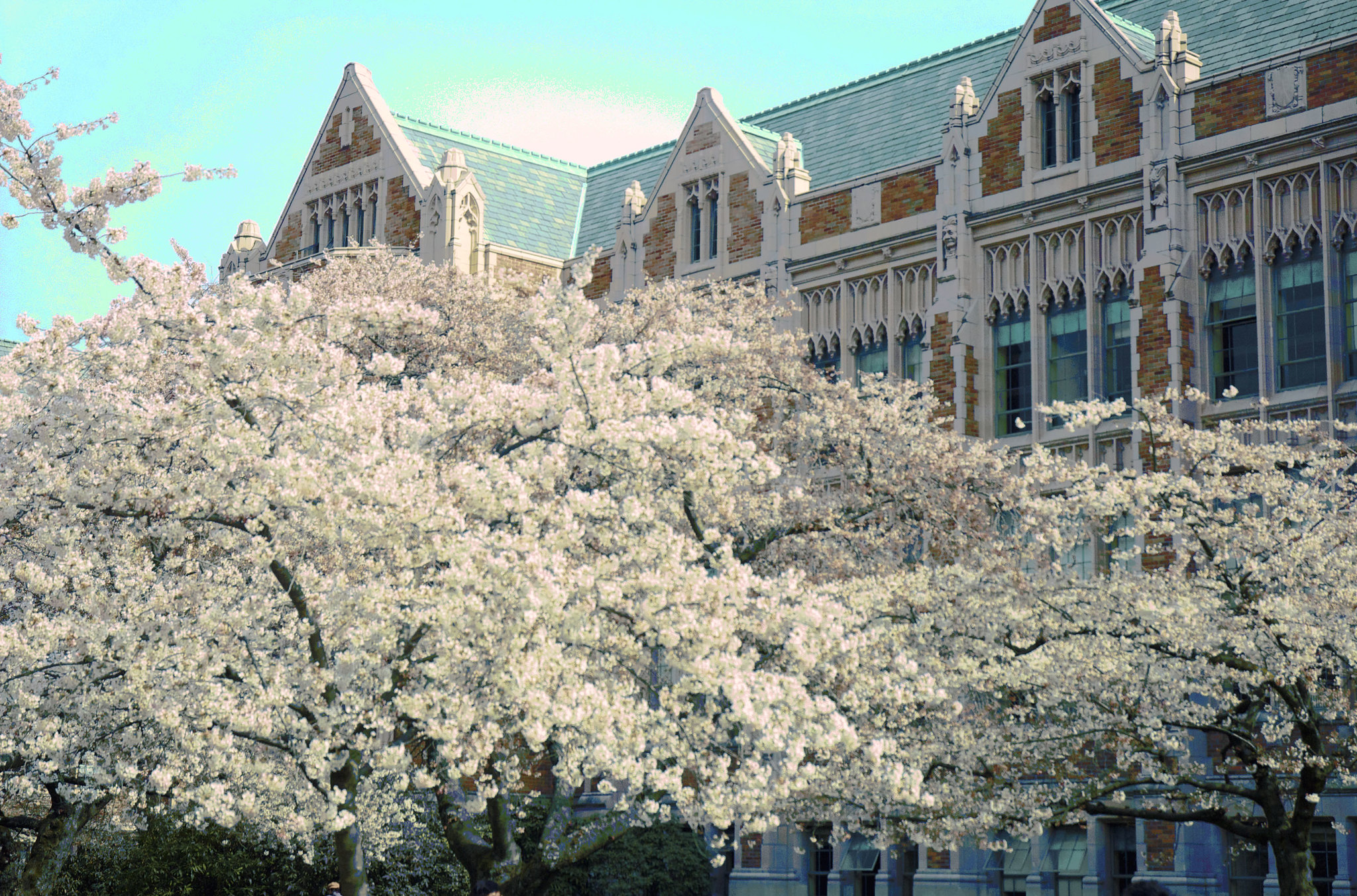 UW jumps to No. 8 in global ranking of best universities; computer science among top subjects