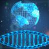 Genome and globe