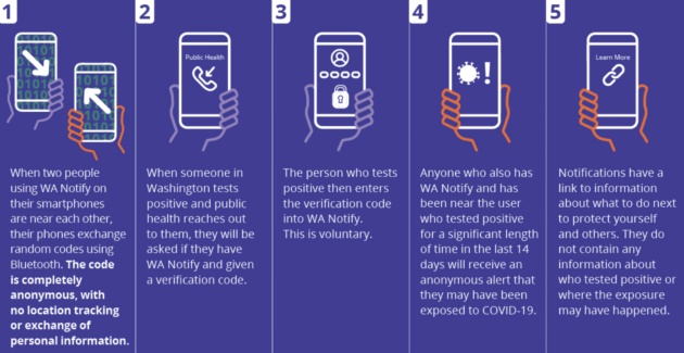 COVID-19 exposure app helped prevent thousands of cases in Washington state, new study shows